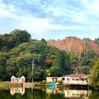 秋の滝の宮公園探訪