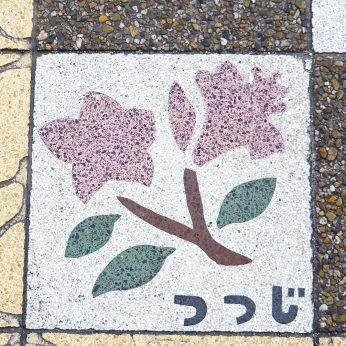 ニイハマ写真部 『まち歩き撮影会』 〜喜光地商店街周辺〜 振り返り③